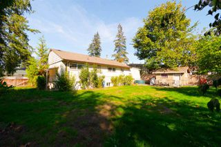 Photo 19: 32244 PINEVIEW Avenue in Abbotsford: Abbotsford West House for sale : MLS®# R2311230