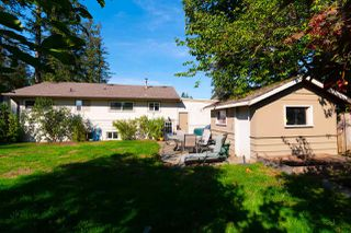 Photo 20: 32244 PINEVIEW Avenue in Abbotsford: Abbotsford West House for sale : MLS®# R2311230