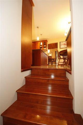 Photo 20: 40475 FRIEDEL Crescent in Squamish: Garibaldi Highlands House for sale : MLS®# R2323563