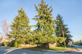Photo 11: 1340 SUTHERLAND Avenue in North Vancouver: Boulevard House for sale : MLS®# R2332782