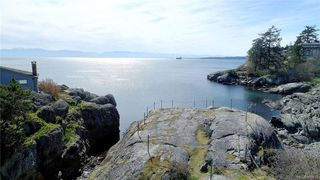 Photo 40: 445 Foster St in VICTORIA: Es Saxe Point House for sale (Esquimalt)  : MLS®# 809612