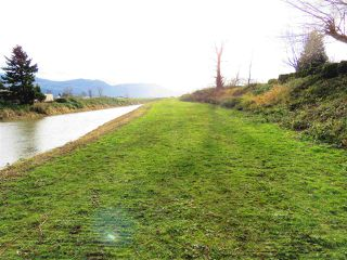 Photo 19: 40160 SOUTH PARALLEL Road in Abbotsford: Sumas Prairie House for sale : MLS®# R2354823