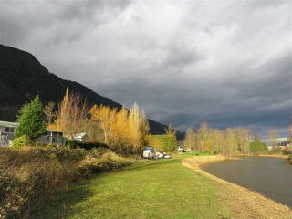 Photo 18: 40160 SOUTH PARALLEL Road in Abbotsford: Sumas Prairie House for sale : MLS®# R2354823