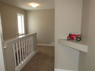 Photo 16: 3467 CUTLER Crescent in Edmonton: Zone 55 House for sale : MLS®# E4153078