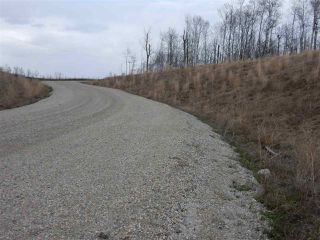 Photo 13: TWP ROAD 492 RANGE ROAD 234: Rural Leduc County Rural Land/Vacant Lot for sale : MLS®# E4155541