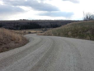 Photo 5: TWP ROAD 492 RANGE ROAD 234: Rural Leduc County Rural Land/Vacant Lot for sale : MLS®# E4155541