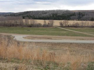 Photo 8: TWP ROAD 492 RANGE ROAD 234: Rural Leduc County Rural Land/Vacant Lot for sale : MLS®# E4155541