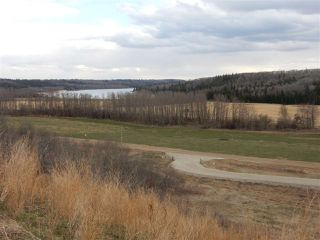Photo 2: TWP ROAD 492 RANGE ROAD 234: Rural Leduc County Rural Land/Vacant Lot for sale : MLS®# E4155541