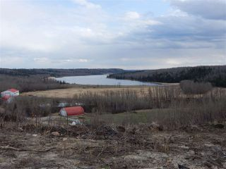 Photo 6: TWP ROAD 492 RANGE ROAD 234: Rural Leduc County Rural Land/Vacant Lot for sale : MLS®# E4155541
