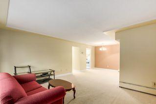 Photo 3:  in Villa Marine: Marpole Home for sale ()  : MLS®# V1095316
