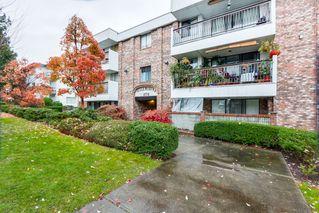 Photo 1:  in Villa Marine: Marpole Home for sale ()  : MLS®# V1095316