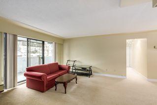 Photo 4:  in Villa Marine: Marpole Home for sale ()  : MLS®# V1095316