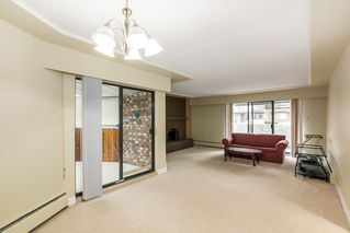 Photo 6:  in Villa Marine: Marpole Home for sale ()  : MLS®# V1095316