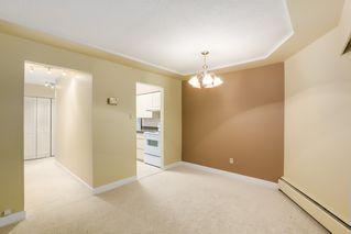 Photo 12:  in Villa Marine: Marpole Home for sale ()  : MLS®# V1095316