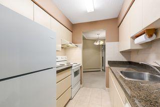 Photo 9:  in Villa Marine: Marpole Home for sale ()  : MLS®# V1095316