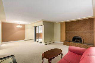 Photo 2:  in Villa Marine: Marpole Home for sale ()  : MLS®# V1095316