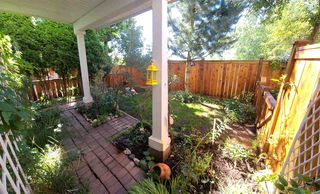 """Photo 25: 63 20540 66 Avenue in Langley: Willoughby Heights Townhouse for sale in """"AMBERLEIGH"""" : MLS®# R2489777"""