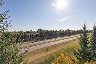 Photo 30: 409 17003 67 Avenue in Edmonton: Zone 20 Condo for sale : MLS®# E4217310