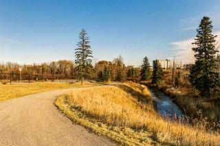 Photo 46: 20 10550 ELLERSLIE Road in Edmonton: Zone 55 House for sale : MLS®# E4219870