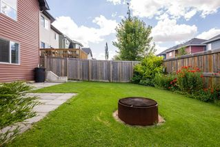 Photo 48: 236 ASCOTT Crescent: Sherwood Park House for sale : MLS®# E4207097