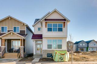 Main Photo: 231 Union Avenue SE in Calgary: Seton Detached for sale : MLS®# A1047697