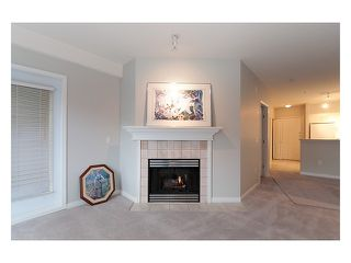 Photo 7: 303 2755 MAPLE Street in Vancouver: Kitsilano Condo for sale (Vancouver West)  : MLS®# V978385
