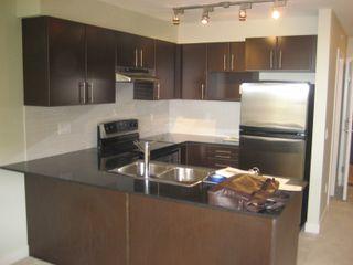 Photo 4: 413-1633 MACKAY AVE in North Vancouver: Pemberton NV Condo for sale : MLS®# V821270