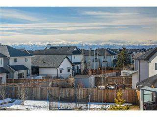 Photo 20: 50 ROYAL BIRCH Terrace NW in Calgary: Royal Oak House for sale : MLS®# C3653365