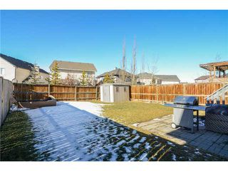 Photo 19: 50 ROYAL BIRCH Terrace NW in Calgary: Royal Oak House for sale : MLS®# C3653365