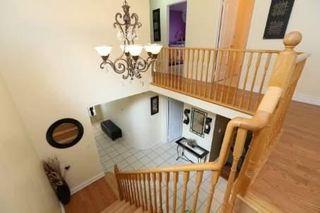 Photo 5: 120 Mint Leaf Boulevard in Brampton: Sandringham-Wellington House (2-Storey) for sale : MLS®# W3359756
