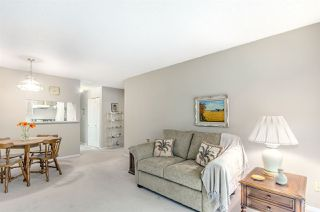 Photo 6: 206 8291 PARK Road in Richmond: Brighouse Condo for sale : MLS®# R2066323