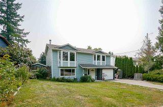 Photo 1: 20454 WESTFIELD Avenue in Maple Ridge: Southwest Maple Ridge House for sale : MLS®# R2195010