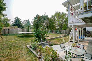 Photo 15: 20454 WESTFIELD Avenue in Maple Ridge: Southwest Maple Ridge House for sale : MLS®# R2195010