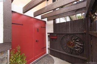 Photo 2: 1884 San Juan Ave in VICTORIA: SE Gordon Head House for sale (Saanich East)  : MLS®# 773740