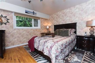 Photo 10: 1884 San Juan Ave in VICTORIA: SE Gordon Head Single Family Detached for sale (Saanich East)  : MLS®# 773740