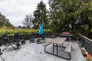 Photo 20: 1884 San Juan Ave in VICTORIA: SE Gordon Head Single Family Detached for sale (Saanich East)  : MLS®# 773740