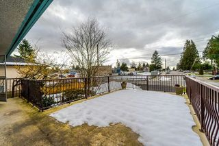 Photo 17: 9780 124 Street in Surrey: Cedar Hills House for sale (North Surrey)  : MLS®# R2242960