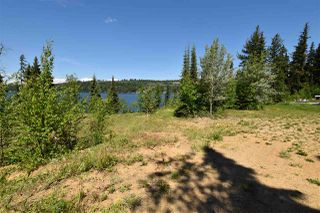 Photo 4: 46050 LLOYD Drive: Cluculz Lake Land for sale (PG Rural West (Zone 77))  : MLS®# R2283023