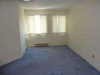 "Photo 10: 303 7751 MINORU Boulevard in Richmond: Brighouse South Condo for sale in ""CANTERBURY COURT"" : MLS®# R2292111"