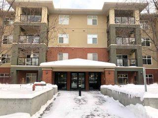 Main Photo: 315 7909 71 Street in Edmonton: Zone 17 Condo for sale : MLS®# E4138010