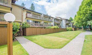 "Main Photo: 309 14935 100 Avenue in Surrey: Guildford Condo for sale in ""Forest Manor"" (North Surrey)  : MLS®# R2385024"