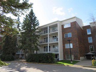 Main Photo: 221 4404 122 Street in Edmonton: Zone 16 Condo for sale : MLS®# E4174798