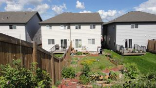 Photo 15: 3616 9 Street NW in Edmonton: Zone 30 House Half Duplex for sale : MLS®# E4206401