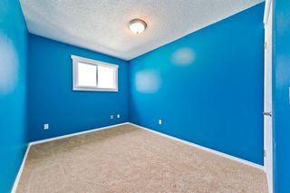 Photo 18: 228 28 Avenue NE in Calgary: Tuxedo Park Detached for sale : MLS®# A1046850