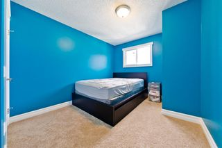 Photo 17: 228 28 Avenue NE in Calgary: Tuxedo Park Detached for sale : MLS®# A1046850