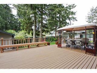 "Photo 17: 5609 120TH Street in Delta: Sunshine Hills Woods House for sale in ""Panarama R idgeSunshine Hills Woods"" (N. Delta)  : MLS®# F1409784"