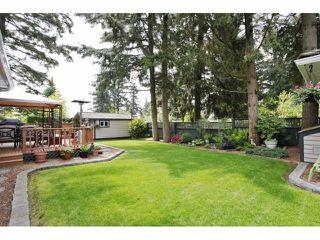 "Photo 20: 5609 120TH Street in Delta: Sunshine Hills Woods House for sale in ""Panarama R idgeSunshine Hills Woods"" (N. Delta)  : MLS®# F1409784"