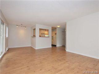 Photo 4: 303 2647 Graham St in VICTORIA: Vi Hillside Condo for sale (Victoria)  : MLS®# 698000