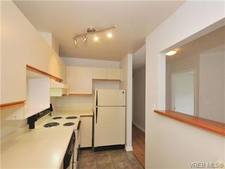 Photo 10: 303 2647 Graham St in VICTORIA: Vi Hillside Condo for sale (Victoria)  : MLS®# 698000