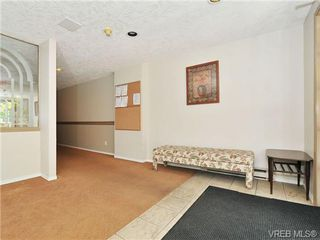 Photo 19: 303 2647 Graham St in VICTORIA: Vi Hillside Condo for sale (Victoria)  : MLS®# 698000